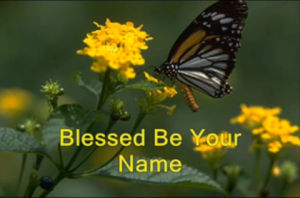 blessed-be-your-name
