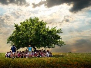 teaching under a tree