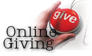 online giving fundraising support