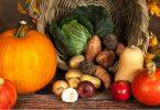 thanksgiving-website-design