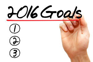 2016 Search Engine Marketing Goals