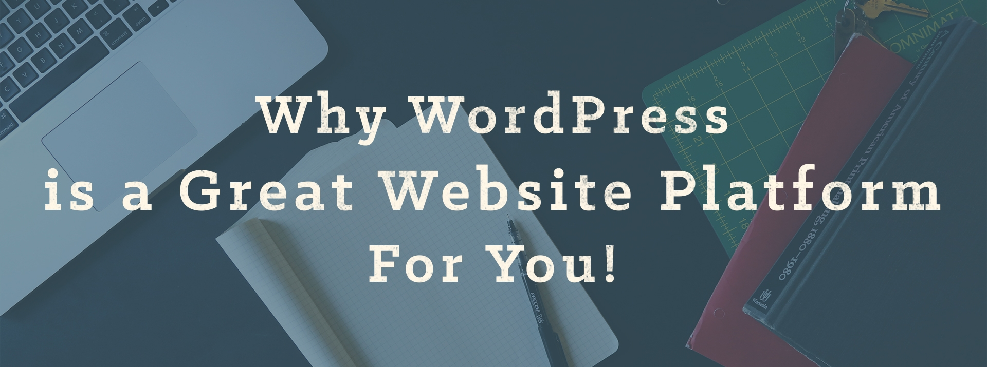 Why WordPress Is A Great Website Platform For You!