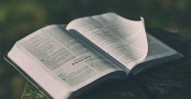 church-website-bible-study