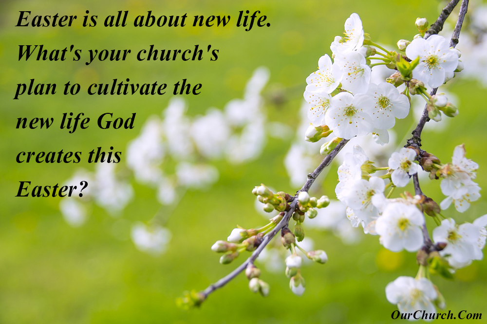quote-ourchurch-easter-is-all-about-new-life